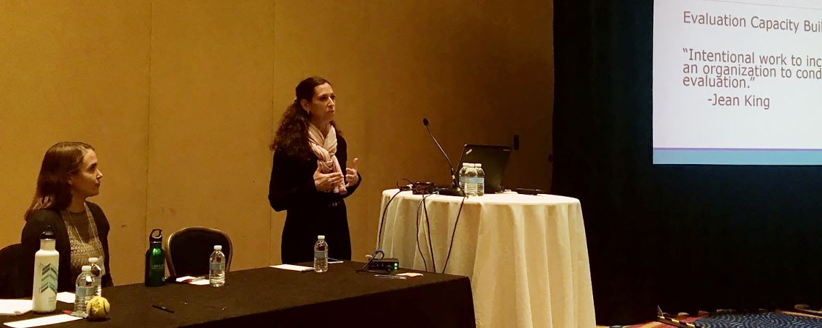 The Improve Group's Leah Goldstein Moses presents on Evaluation Capacity Building at the 2017 American Evaluation Association Conference