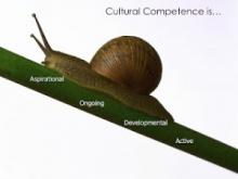 snail climbing a twig with the words, aspirational, ongoing, developmental, active